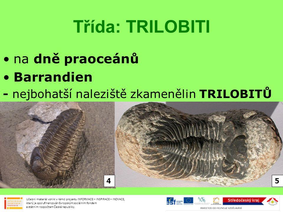 Třída: TRILOBITI na dně praoceánů Barrandien