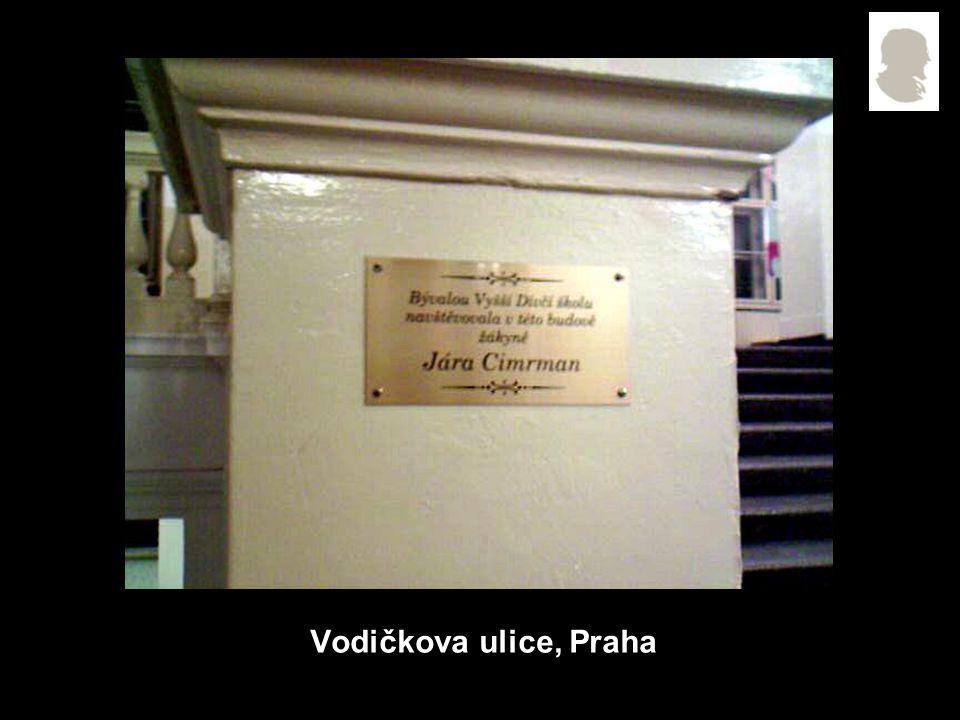 Vodičkova ulice, Praha