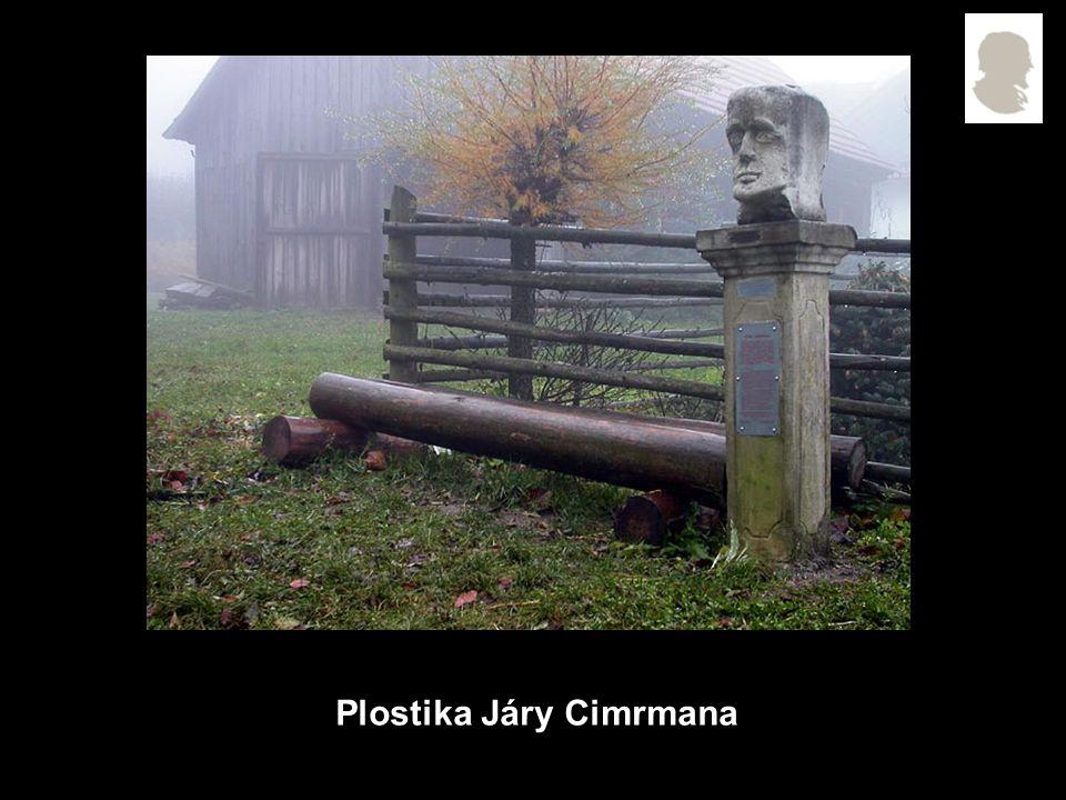Plostika Járy Cimrmana
