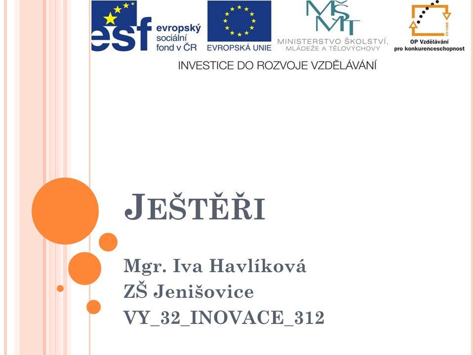 Mgr. Iva Havlíková ZŠ Jenišovice VY_32_INOVACE_312