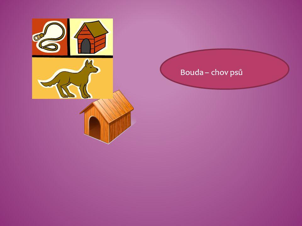 Bouda – chov psů