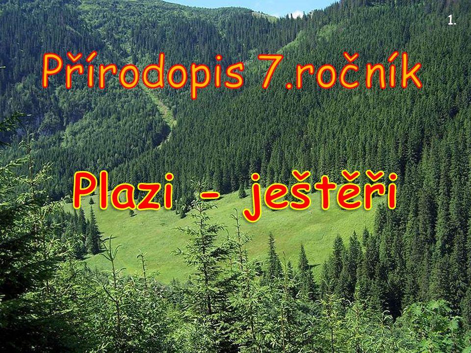 1. Přírodopis 7.ročník Plazi - ještěři