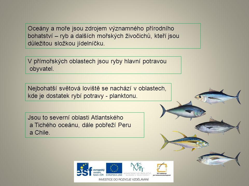 Oceány a moře jsou zdrojem významného přírodního bohatství – ryb a dalších mořských živočichů, kteří jsou důležitou složkou jídelníčku.