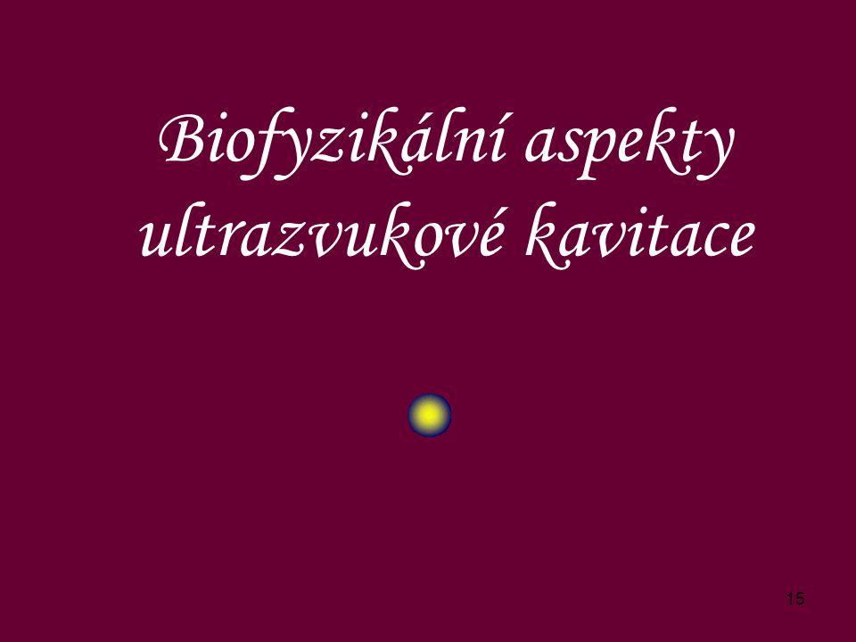 Biofyzikální aspekty ultrazvukové kavitace