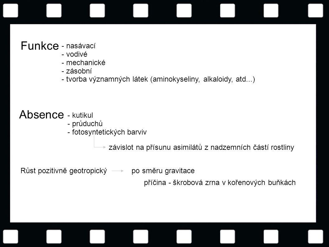 Funkce Absence - nasávací - vodivé - mechanické - zásobní
