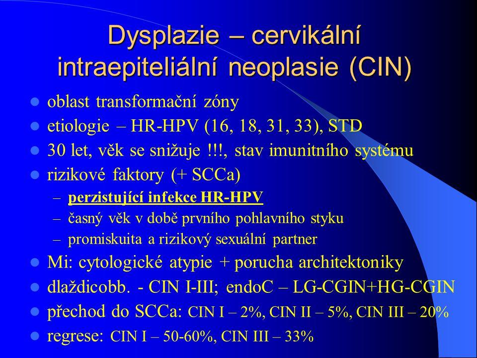 Dysplazie – cervikální intraepiteliální neoplasie (CIN)