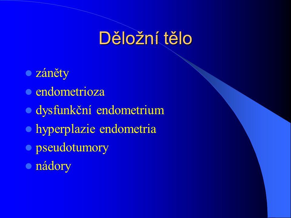 Děložní tělo záněty endometrioza dysfunkční endometrium