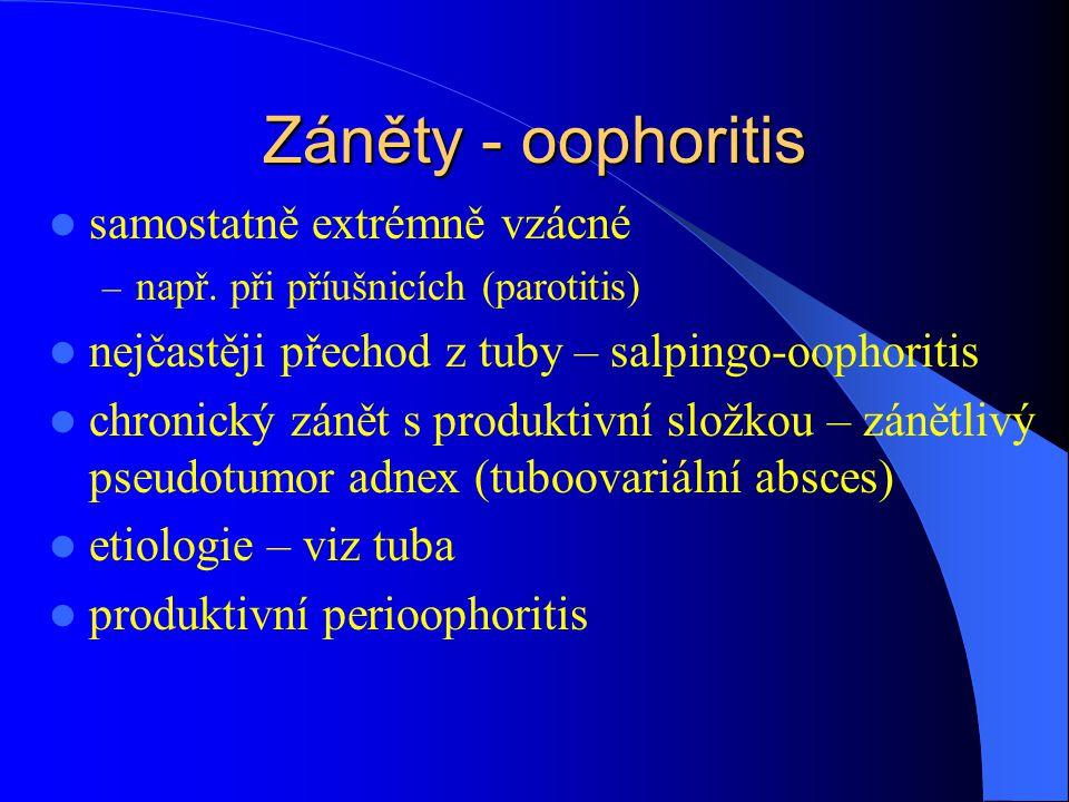Záněty - oophoritis samostatně extrémně vzácné