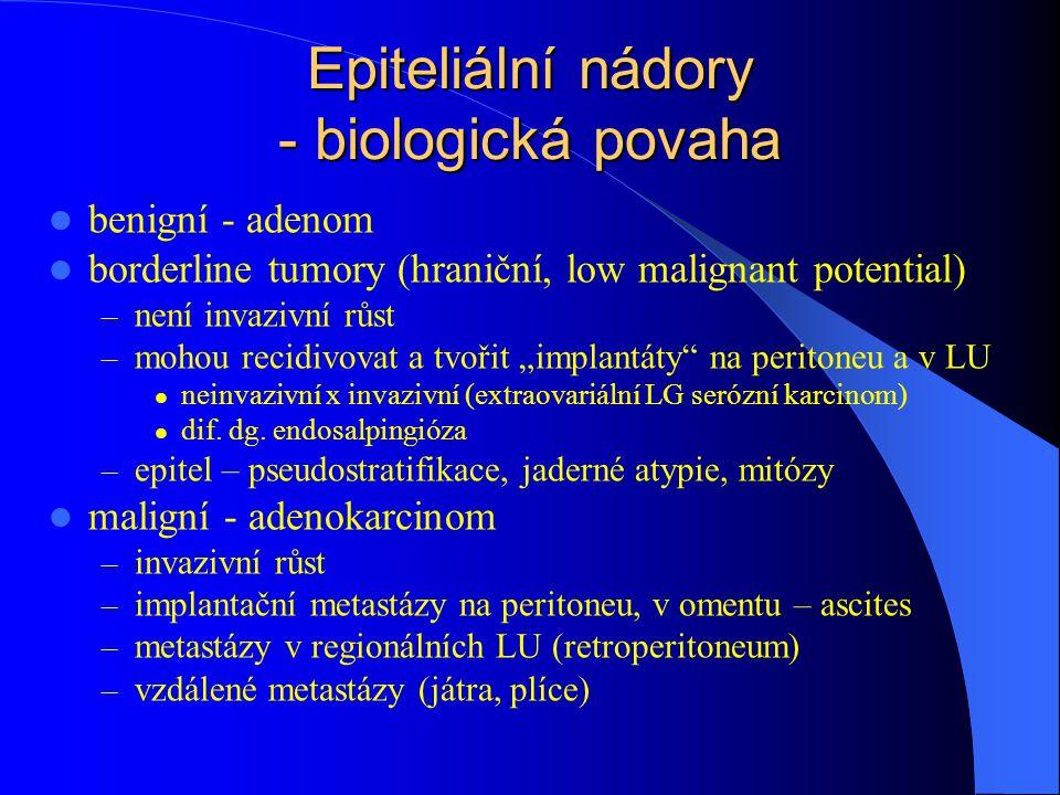 Epiteliální nádory - biologická povaha