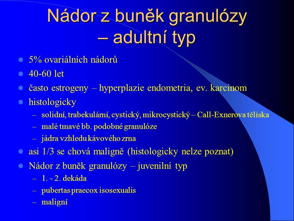 Nádor z buněk granulózy – adultní typ