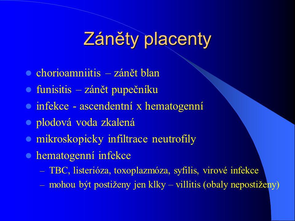 Záněty placenty chorioamniitis – zánět blan