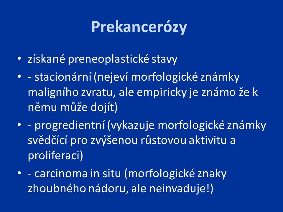 Prekancerózy získané preneoplastické stavy