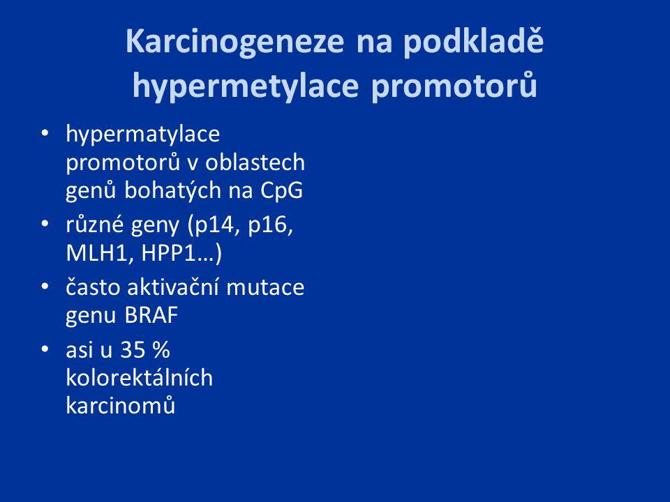 Karcinogeneze na podkladě hypermetylace promotorů
