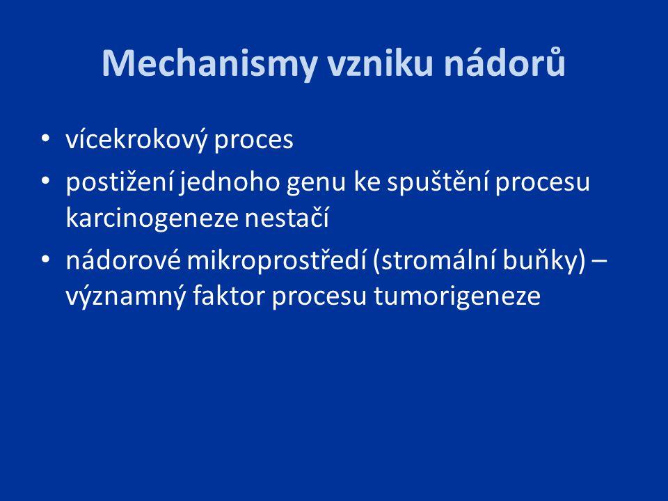 Mechanismy vzniku nádorů