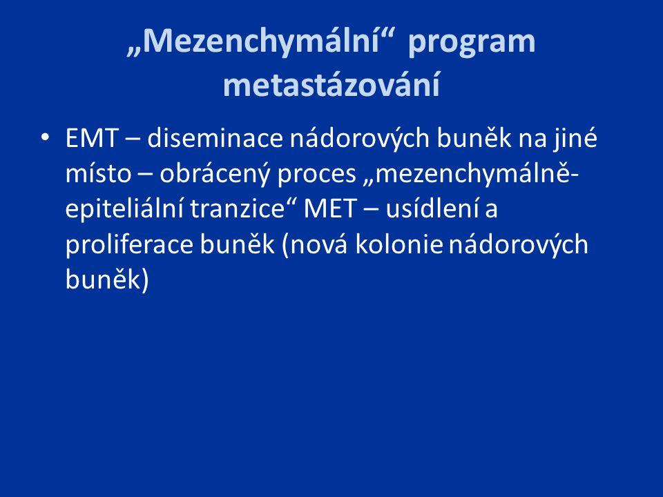 """""""Mezenchymální program metastázování"""