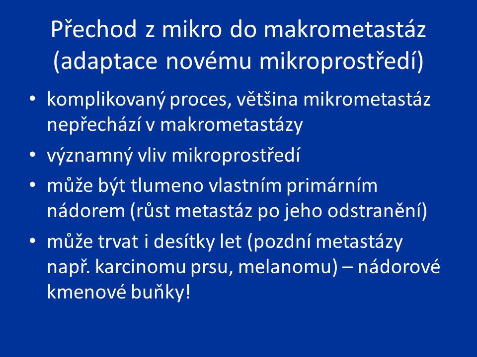 Přechod z mikro do makrometastáz (adaptace novému mikroprostředí)