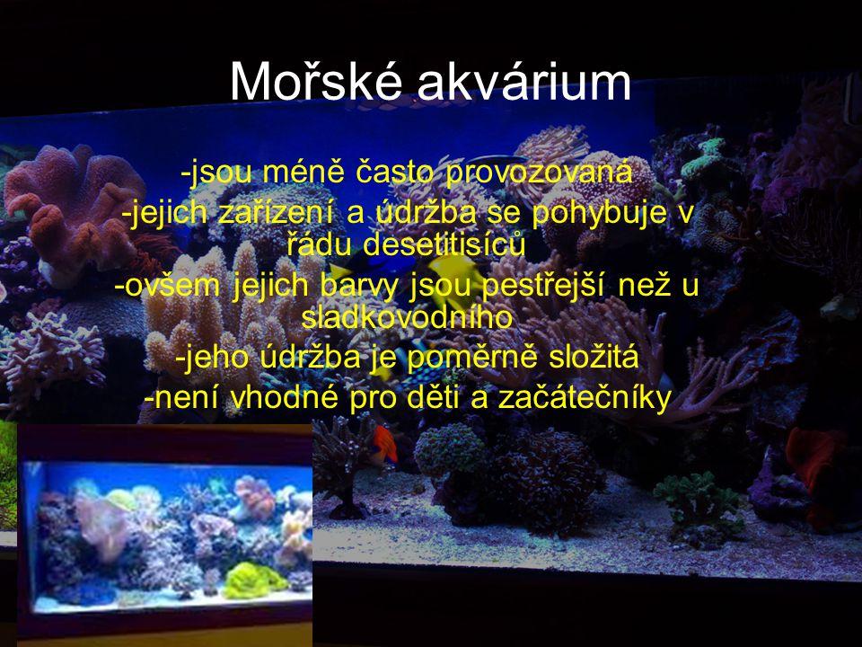 Mořské akvárium -jsou méně často provozovaná