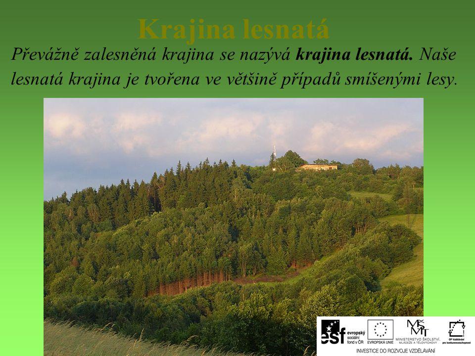Krajina lesnatá Převážně zalesněná krajina se nazývá krajina lesnatá.