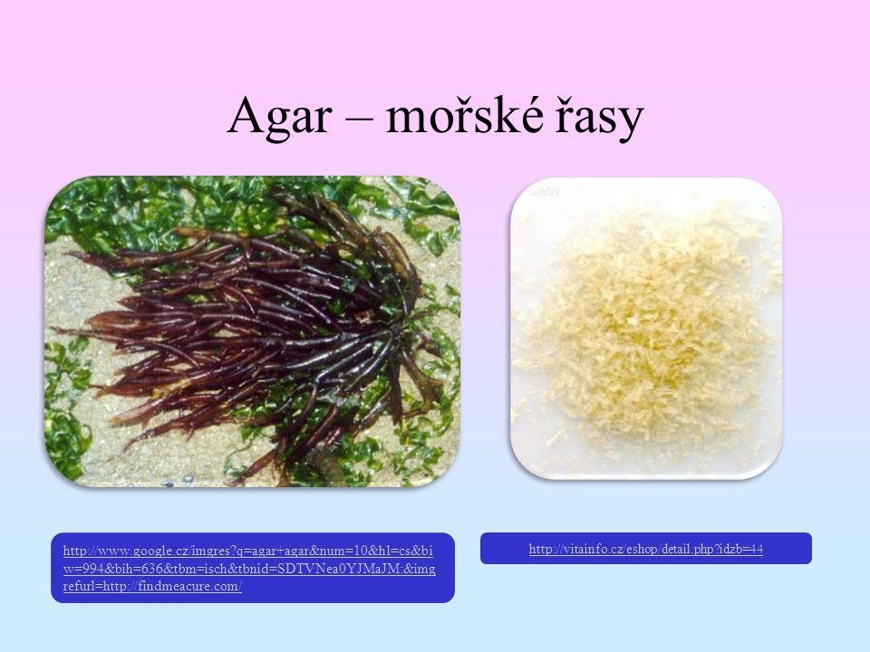 Agar – mořské řasy