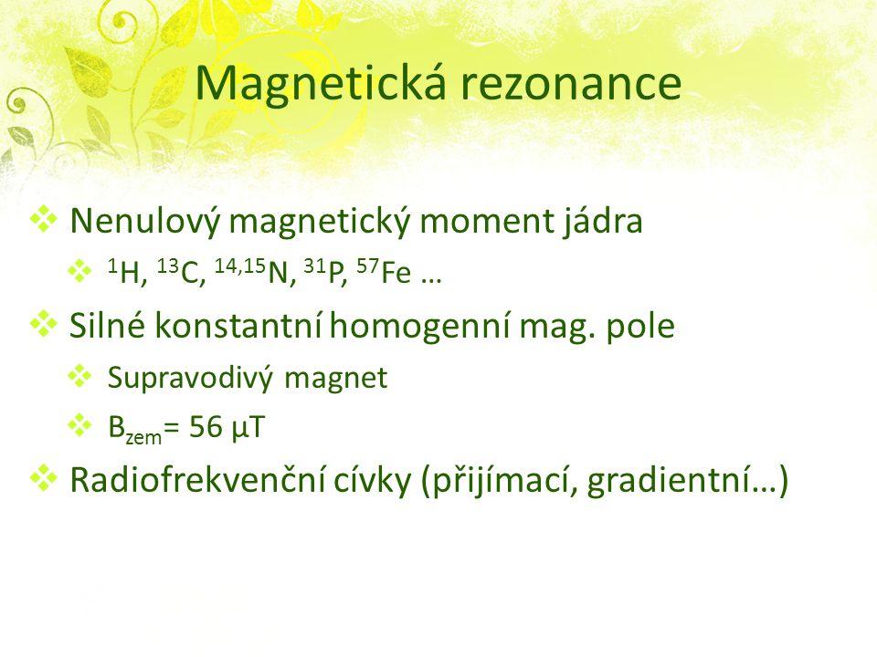 Magnetická rezonance Nenulový magnetický moment jádra