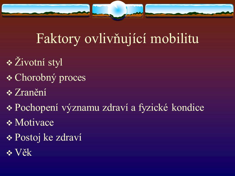 Faktory ovlivňující mobilitu