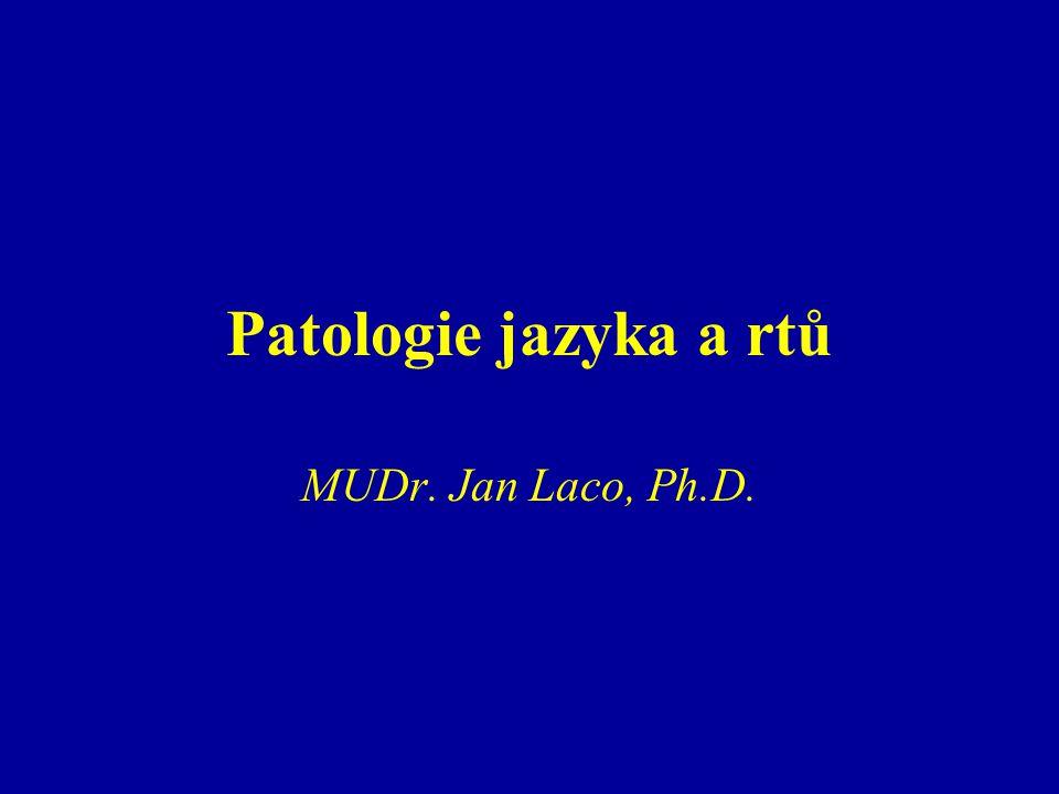 Patologie jazyka a rtů MUDr. Jan Laco, Ph.D.