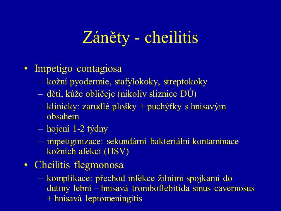 Záněty - cheilitis Impetigo contagiosa Cheilitis flegmonosa