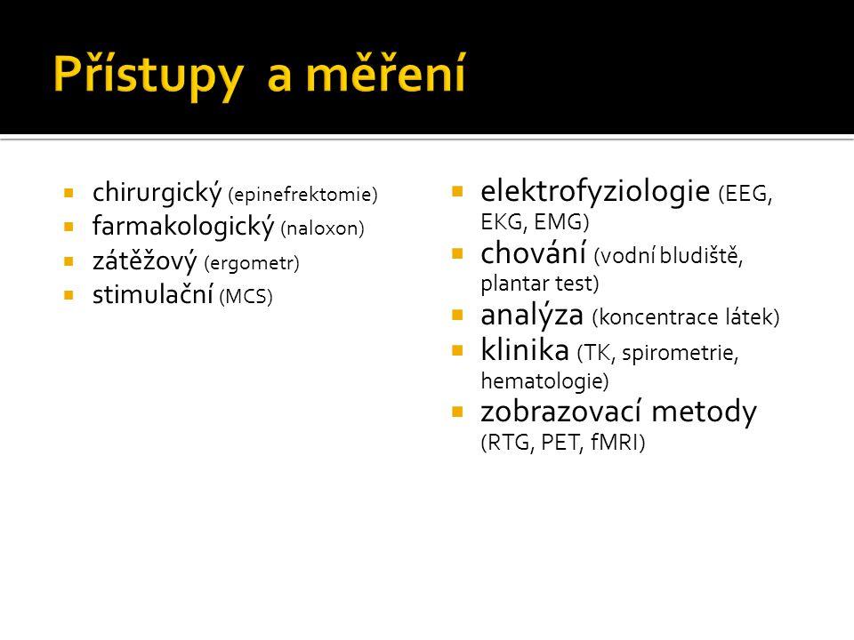 Přístupy a měření elektrofyziologie (EEG, EKG, EMG)