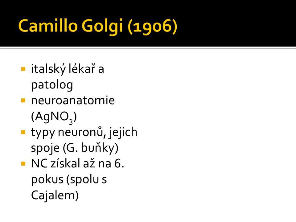 Camillo Golgi (1906) italský lékař a patolog neuroanatomie (AgNO3)