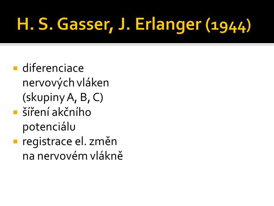 H. S. Gasser, J. Erlanger (1944) diferenciace nervových vláken (skupiny A, B, C) šíření akčního potenciálu.
