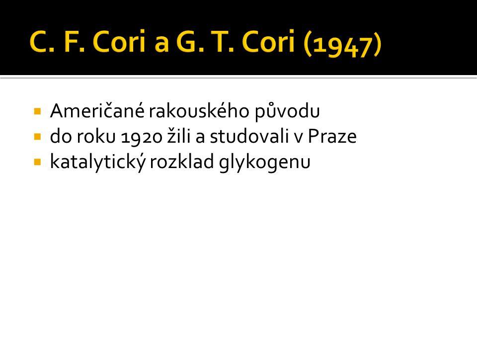 C. F. Cori a G. T. Cori (1947) Američané rakouského původu
