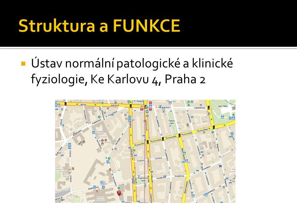 Struktura a FUNKCE Ústav normální patologické a klinické fyziologie, Ke Karlovu 4, Praha 2