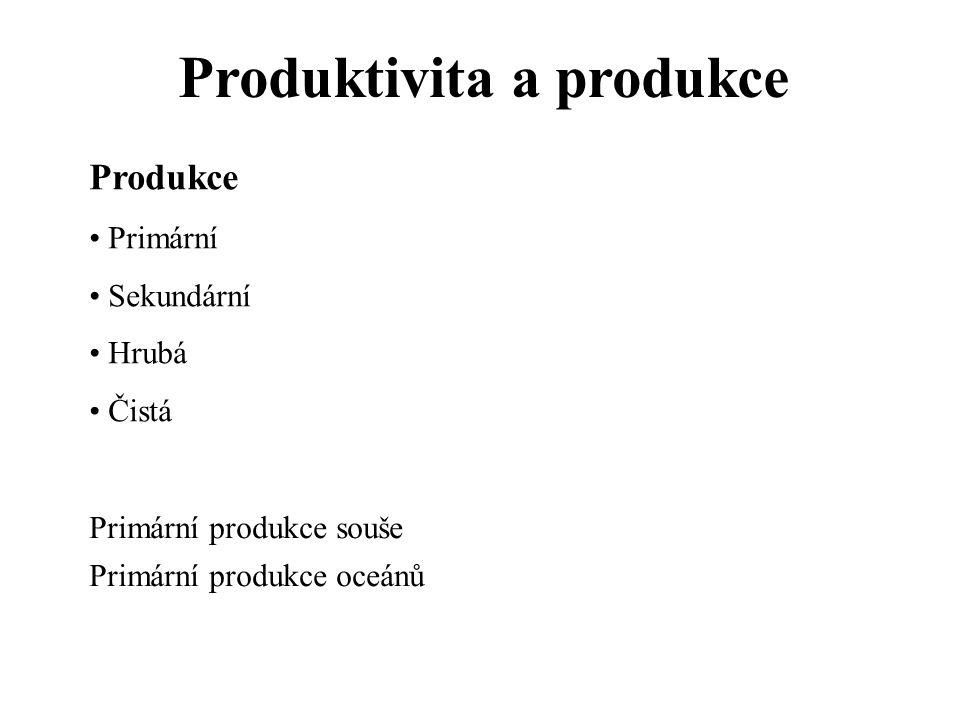Produktivita a produkce