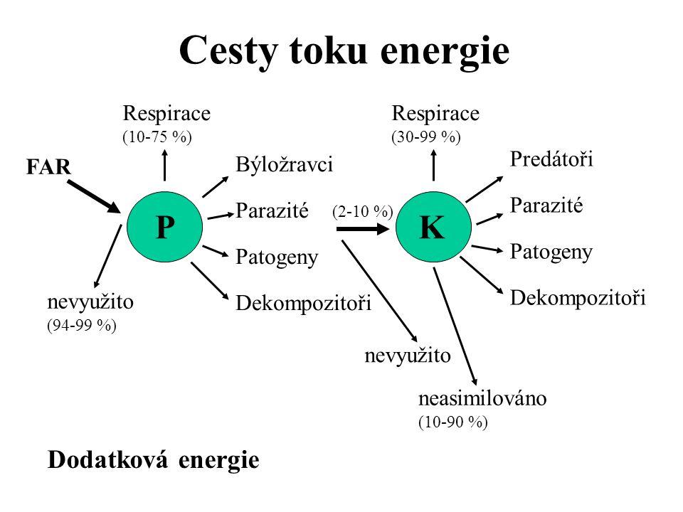 Cesty toku energie P K Dodatková energie Respirace (10-75 %)