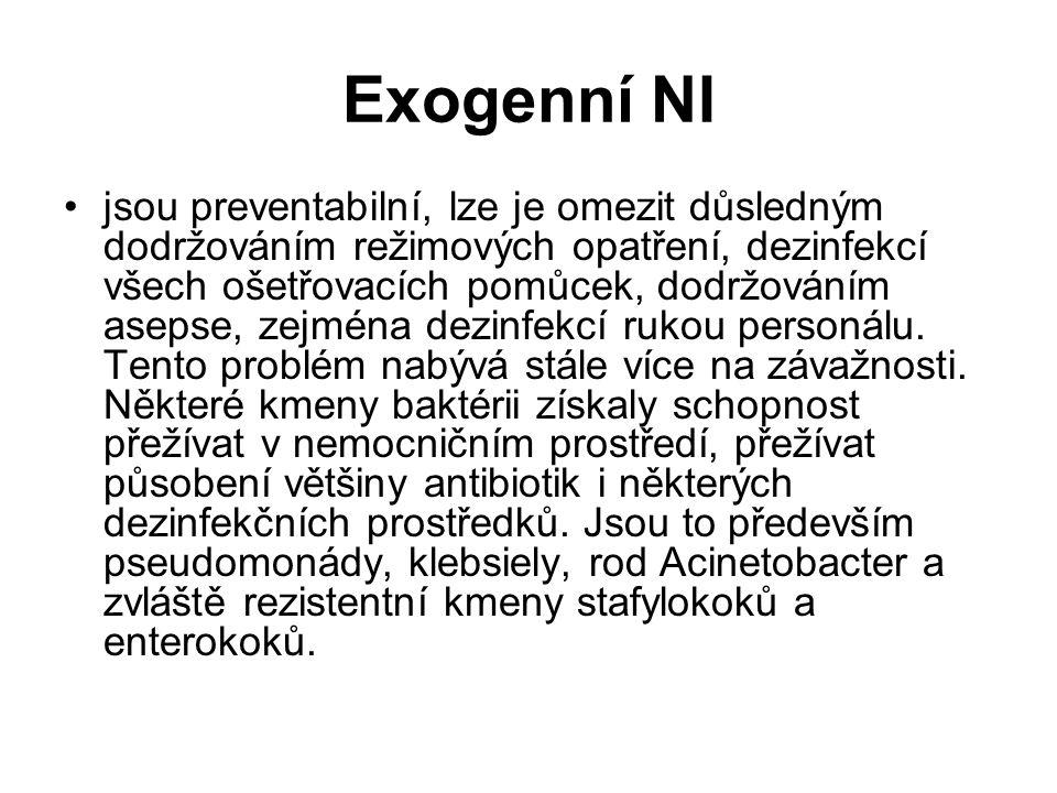 Exogenní NI