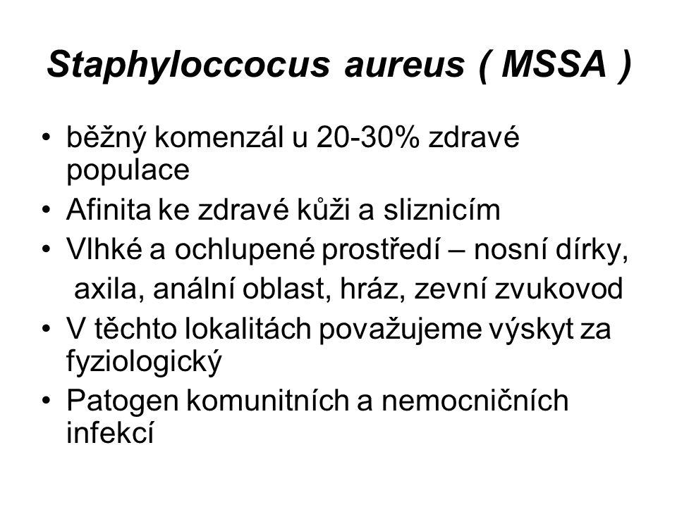 Staphyloccocus aureus ( MSSA )