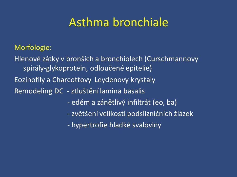 Asthma bronchiale