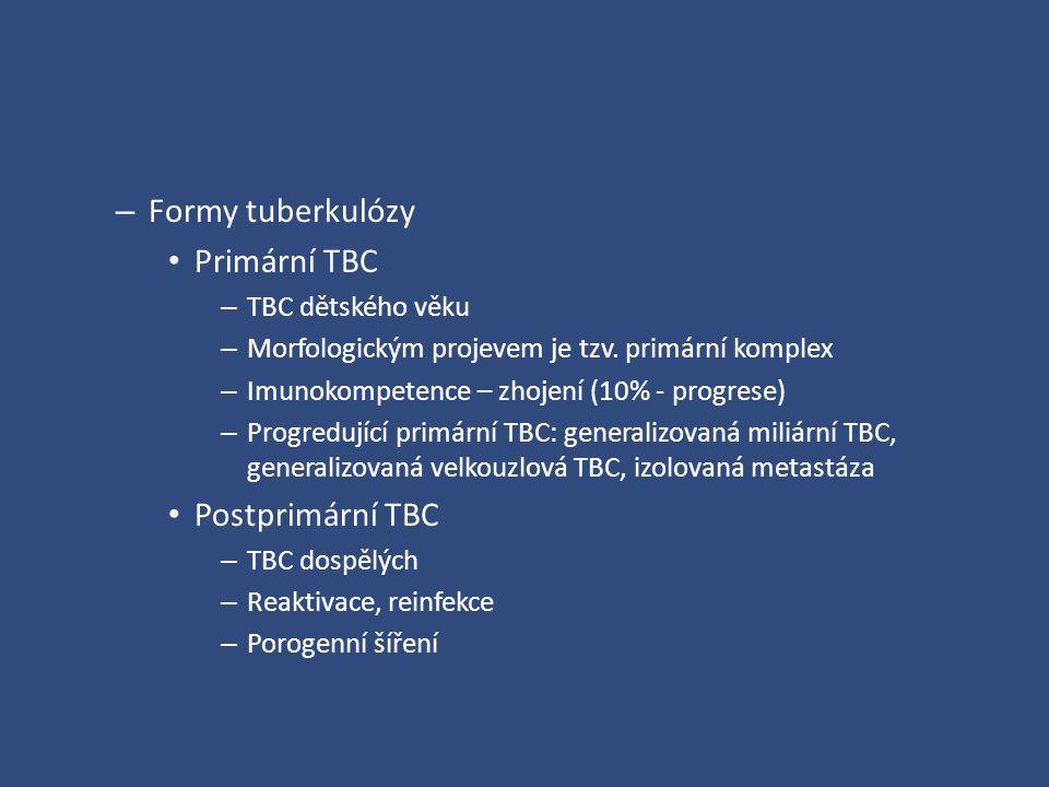 Formy tuberkulózy Primární TBC Postprimární TBC TBC dětského věku