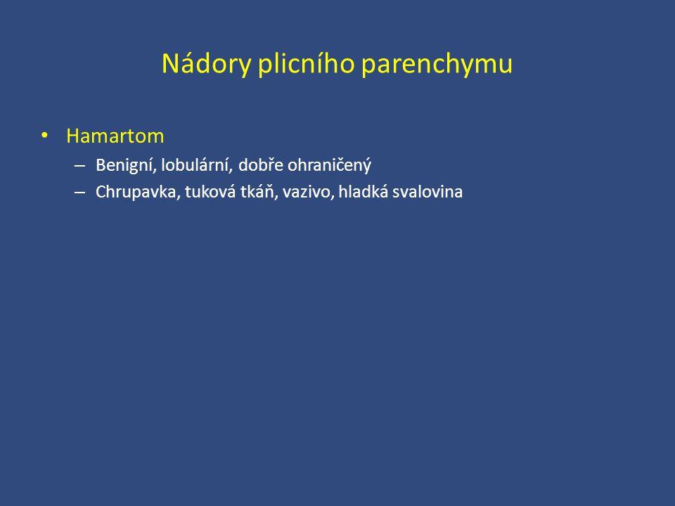Nádory plicního parenchymu