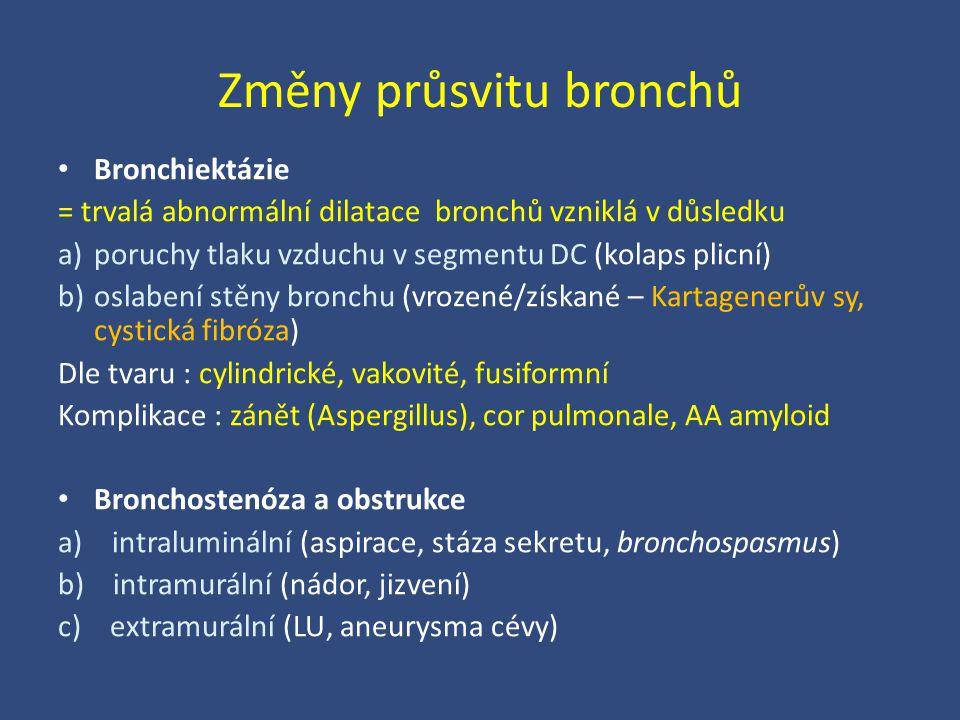 Změny průsvitu bronchů