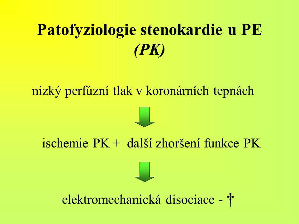 Patofyziologie stenokardie u PE (PK)