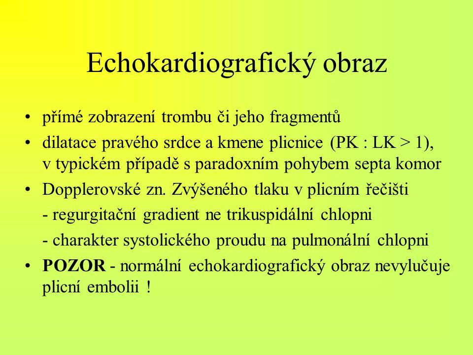 Echokardiografický obraz