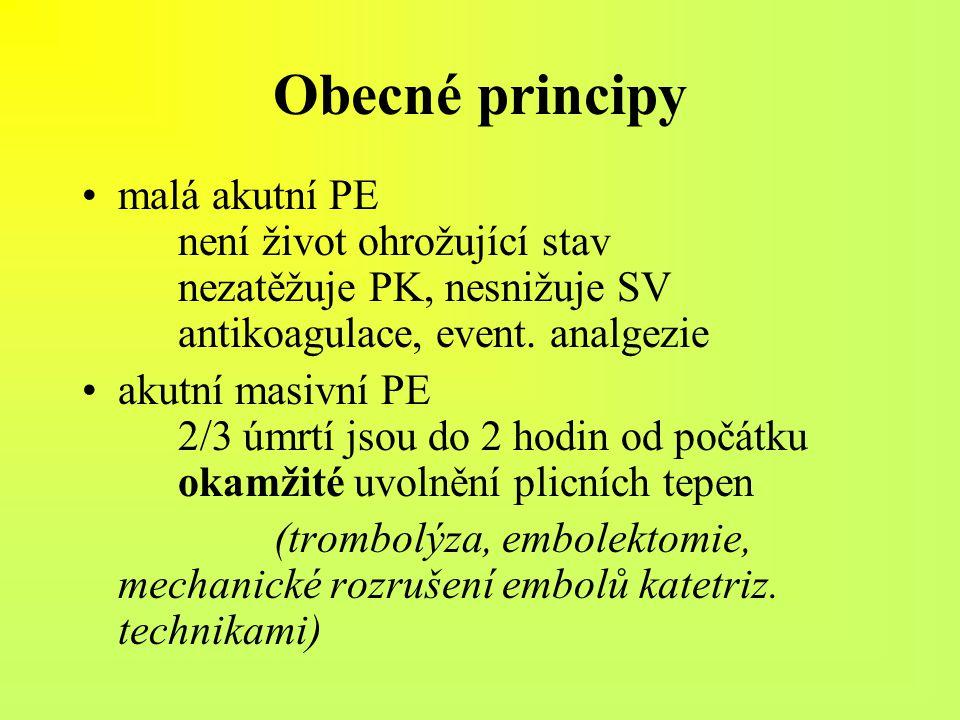 Obecné principy malá akutní PE není život ohrožující stav nezatěžuje PK, nesnižuje SV antikoagulace, event. analgezie.