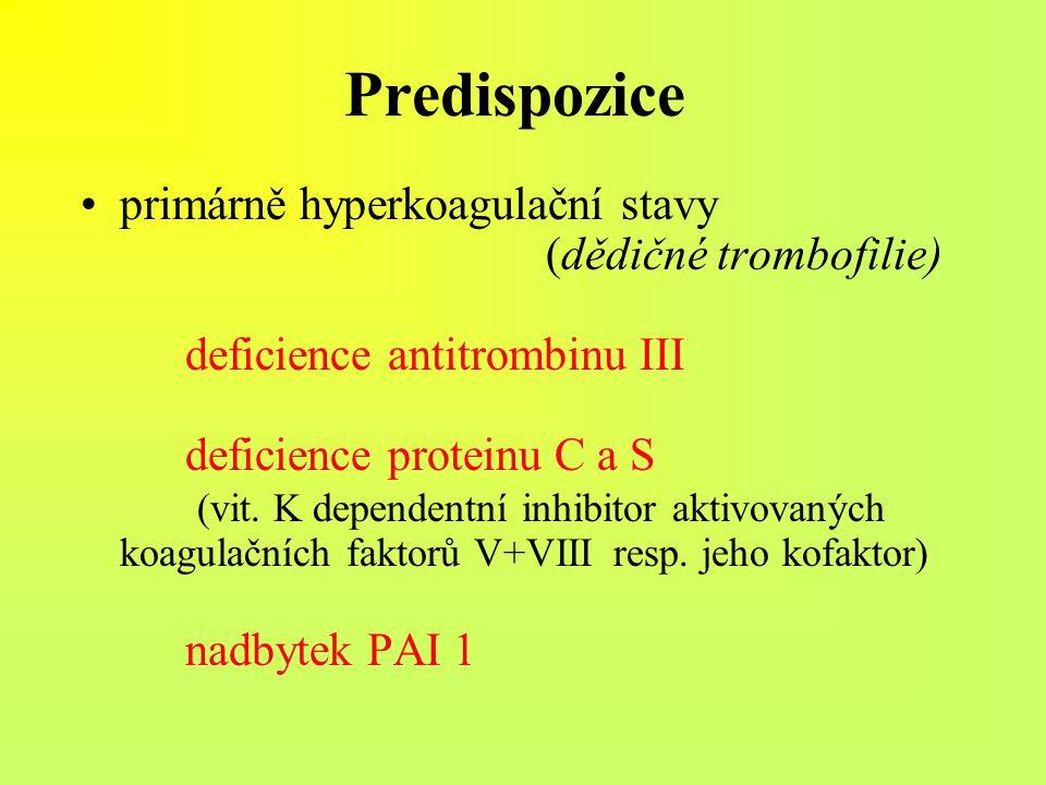 Predispozice