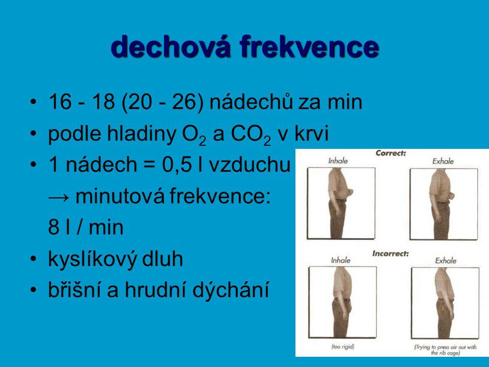 dechová frekvence 16 - 18 (20 - 26) nádechů za min