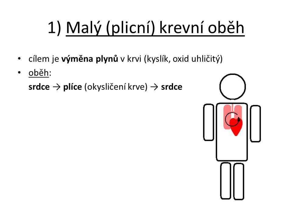 1) Malý (plicní) krevní oběh