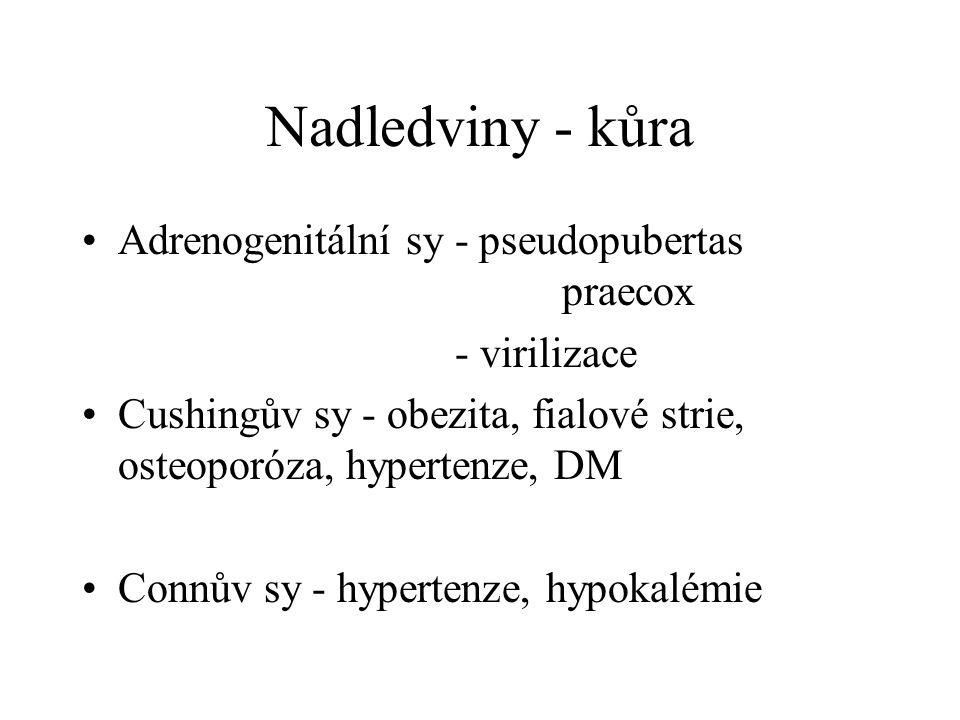 Nadledviny - kůra Adrenogenitální sy - pseudopubertas praecox