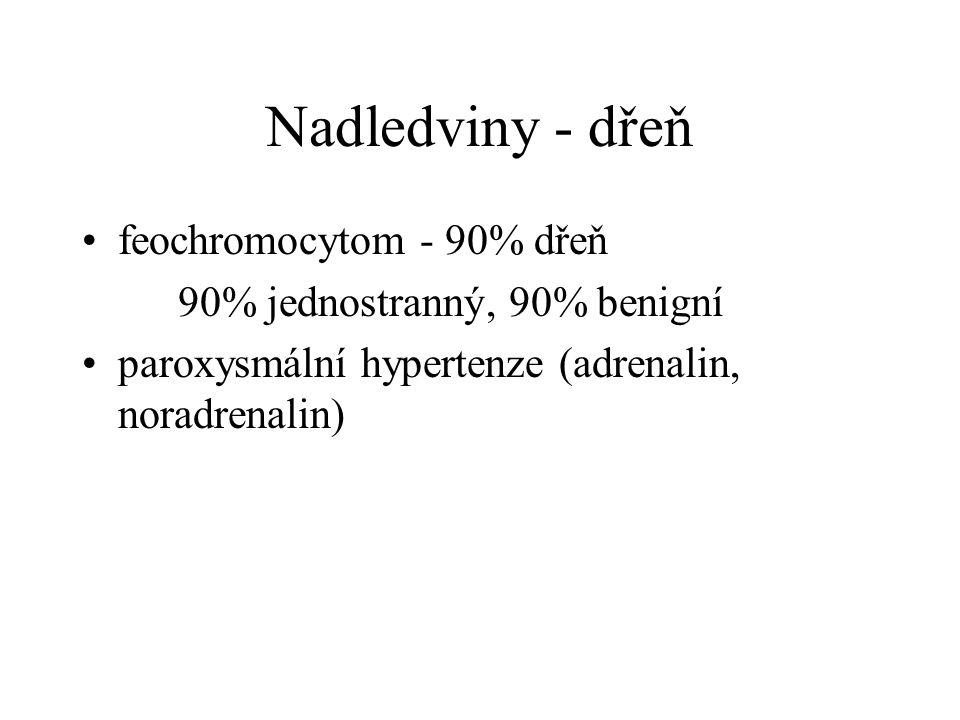 Nadledviny - dřeň feochromocytom - 90% dřeň