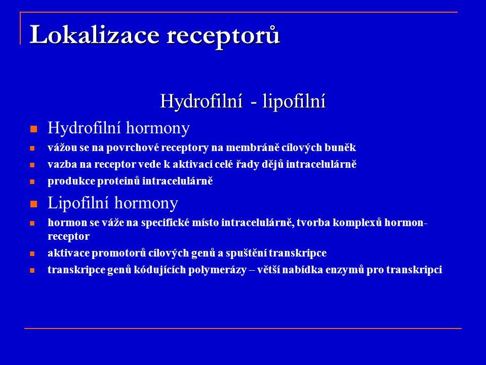 Hydrofilní - lipofilní