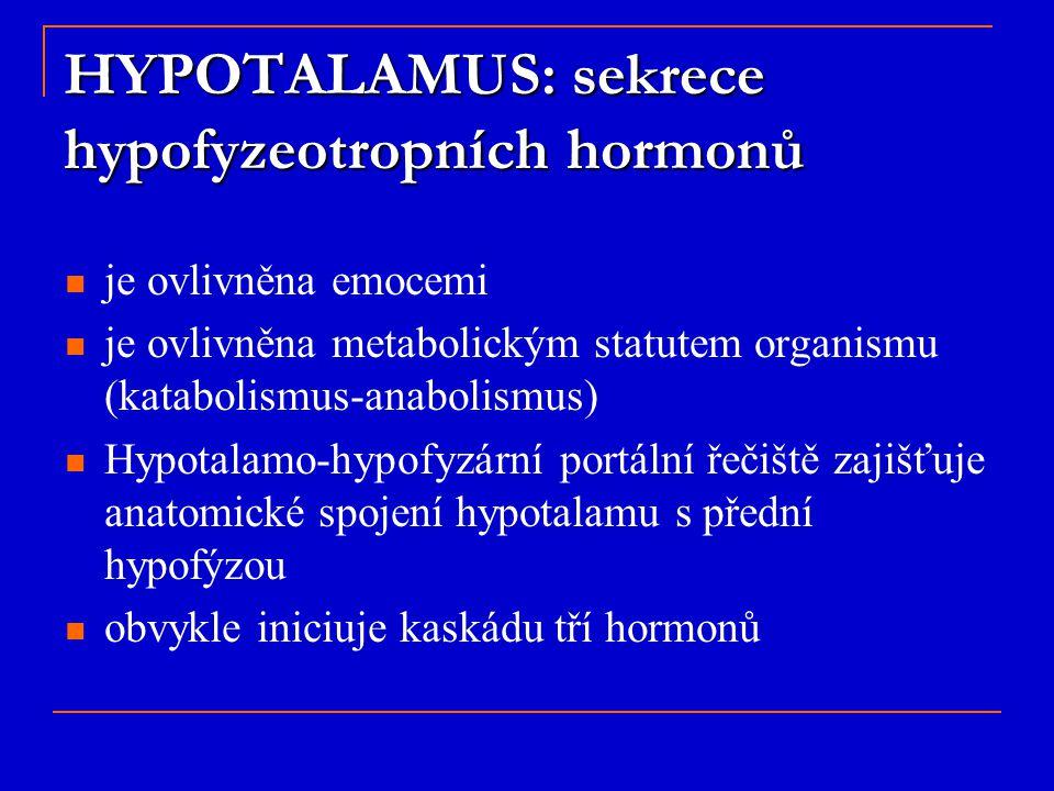 HYPOTALAMUS: sekrece hypofyzeotropních hormonů